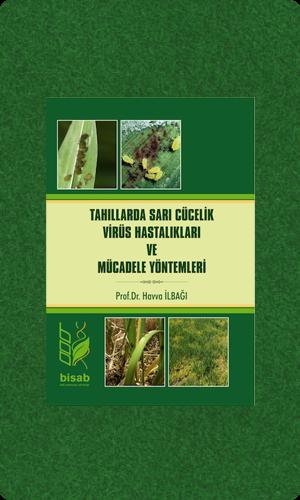 Tahıllarda Sarı Cücelik Virüs Hastalıkları ve Mücadele Yöntemleri